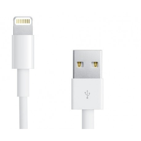 Cable Data de charge et synchronisation pour Apple iPhone 5, iPhone 5c, iPhone 5S - Blanc